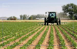 Agricultuur-industrie